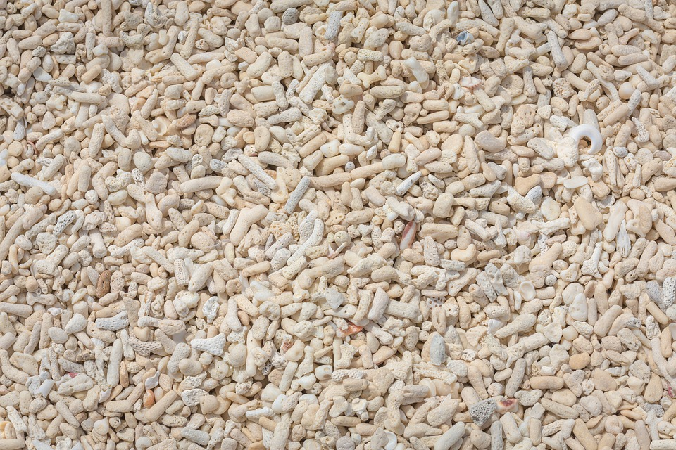 L'allestimento dell'acquario in casa: come scegliere il fondale - Sabbia corallina